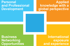 The Executive MBA holistic approach